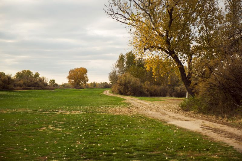 Tamarisk Golf Course